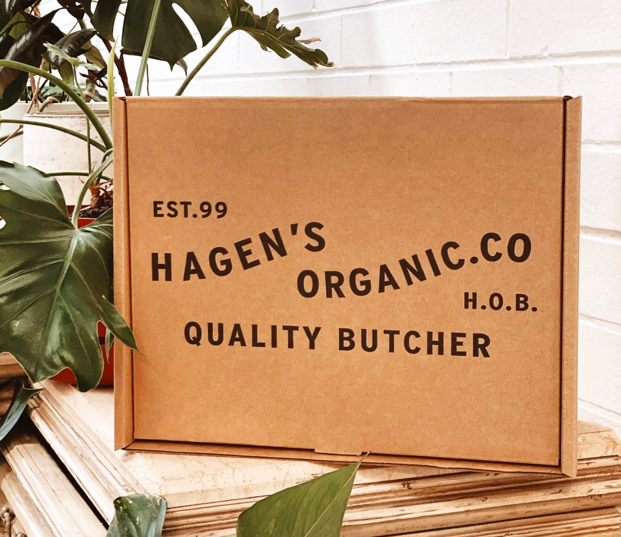 Hagen's Delivery Gets Greener - Environmentally Responsible Insulated Packaging
