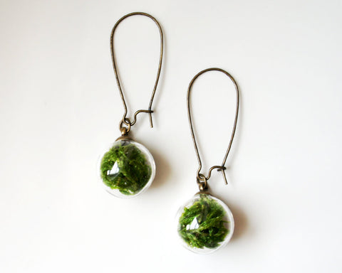 Glass Globe Moss Earrings