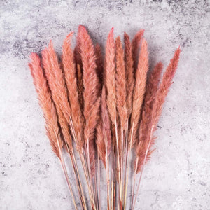 Roze fluffy pampas set van 10