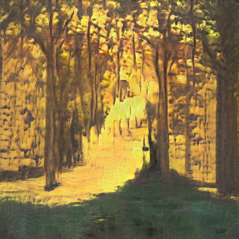 Sunlight in the Forest - AI Art Shop