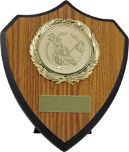 Load image into Gallery viewer, Medium Oak Colour Plaque Trophy