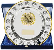 Load image into Gallery viewer, Silver With Gold Trim Salver Trophy