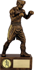 Boxing Bronze Figure trophy.