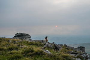 Dartmoor on August 10th 2020