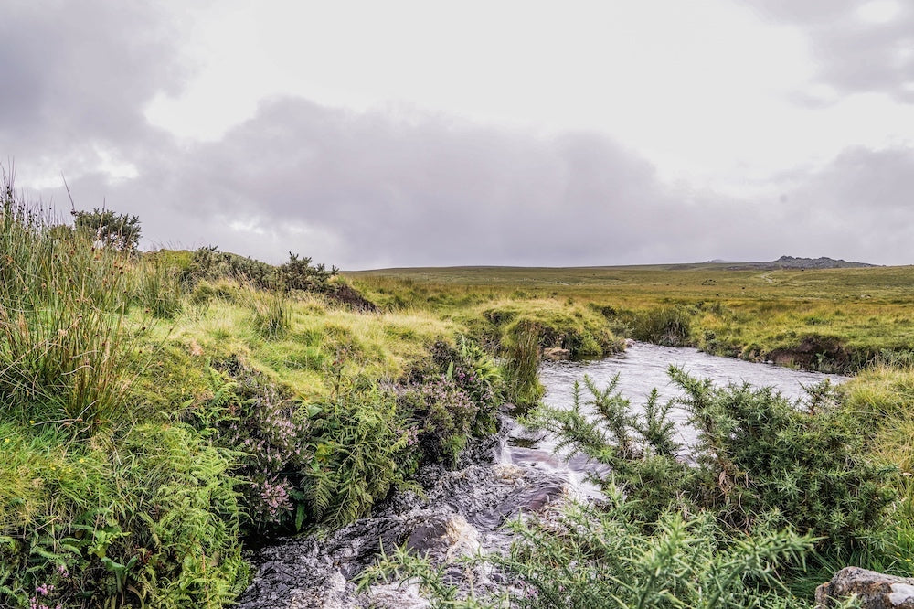 Dartmoor on August 19th 2020