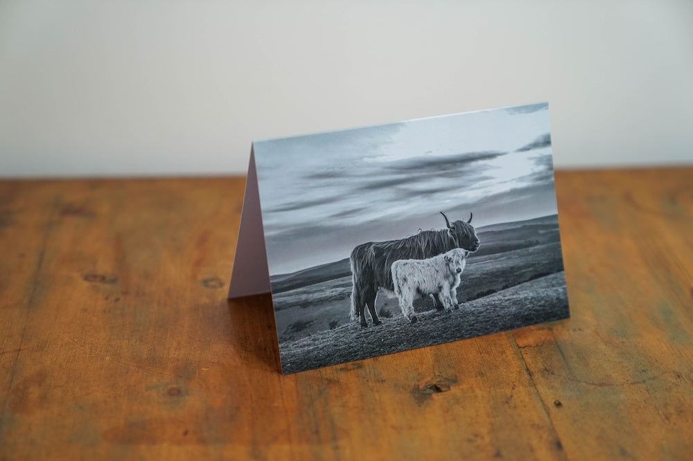Dartmoor's Highlands Card