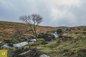 Dartmoor on December 22nd 2020