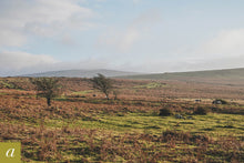 Load image into Gallery viewer, Dartmoor on December 7th 2020