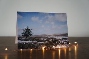 Fir Tree Christmas Card