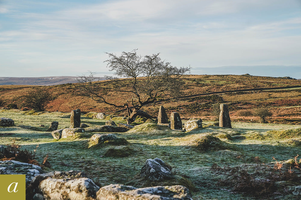 Dartmoor on January 2nd 2021