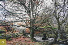 Load image into Gallery viewer, Dartmoor on November 10th 2020