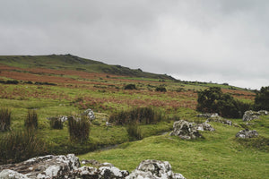 Dartmoor on November 11th 2020