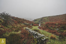 Load image into Gallery viewer, Dartmoor on November 21st 2020