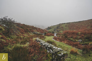 Dartmoor on November 21st 2020