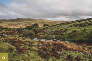 Dartmoor on October 22nd 2020