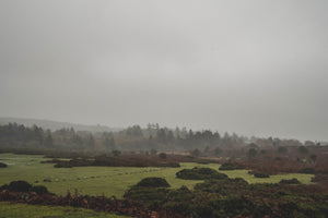 Dartmoor on October 24th 2020