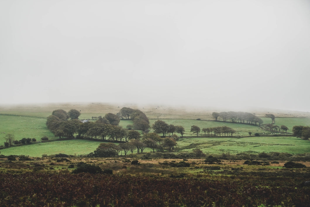 Dartmoor on October 3rd 2020