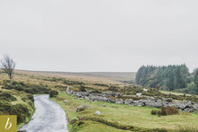 Load image into Gallery viewer, Dartmoor on October 4th 2020