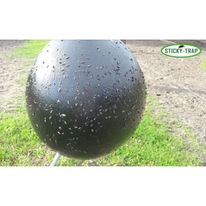 Black ball with flytrap glue for biting horseflies