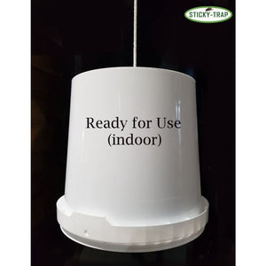 Sticky Trap bucket white 11 L. for flytrap (indoor)