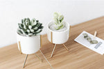 Load image into Gallery viewer, Chic Planter with/without Stand