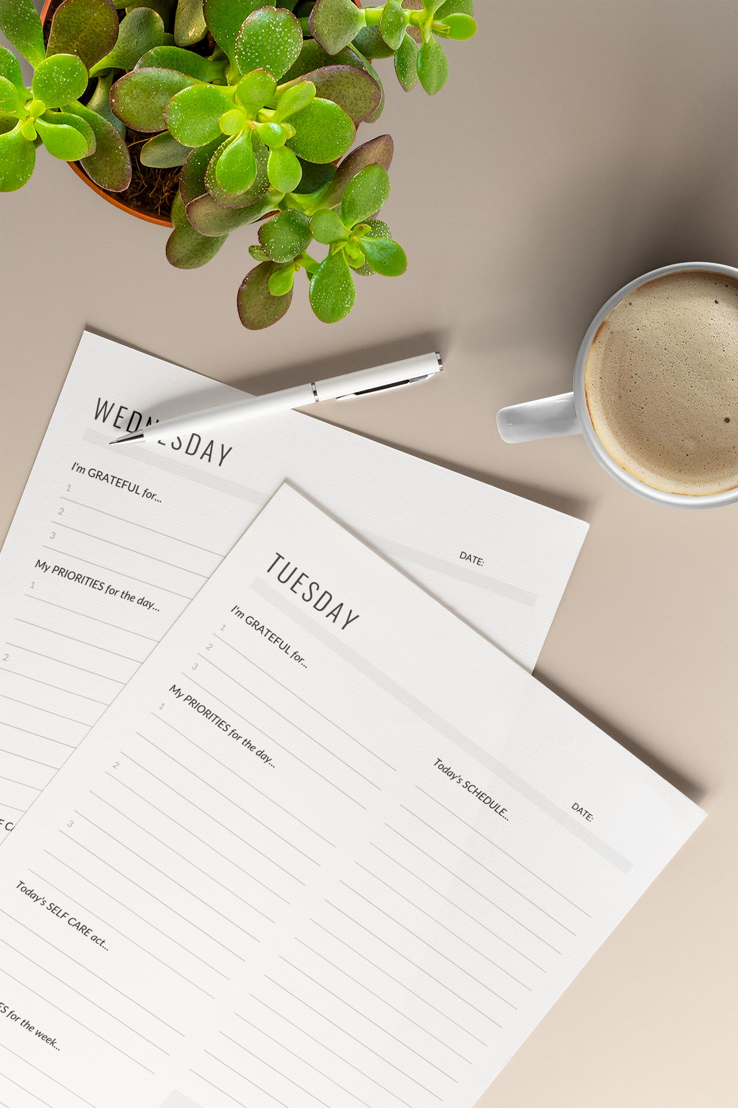 Daily planner pages sitting at a table with a pen, mug of coffee, and a succulent. The printable daily planner pages showcased are designed to help clarify priorities to ensure the user is meeting goals and setting healthy boundaries for an intentional life.