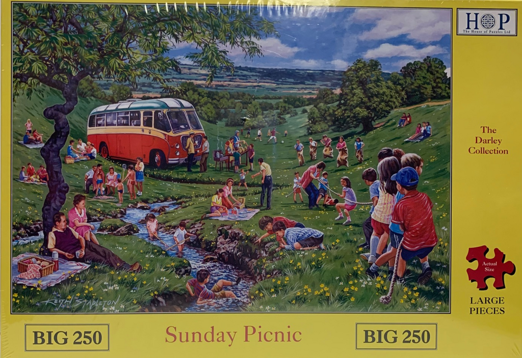 The House of Puzzles Sunday Picnic
