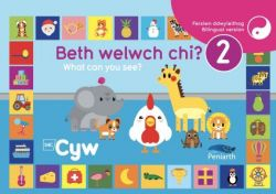 Beth Welwch Chi? / What Can You See? 2