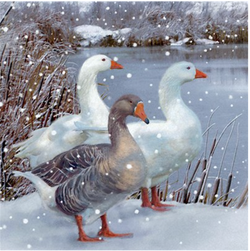 3 Geese Painterly