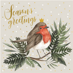 Seasons Greetings Robin