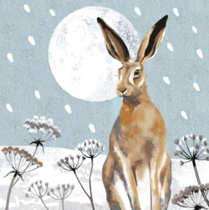 Hare and Moon