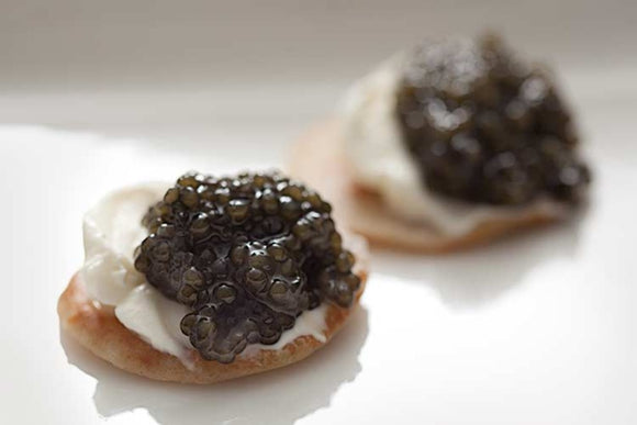 Osciestra Royal Caviar