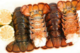 Lobster Tails 1lb (Various Sizes)