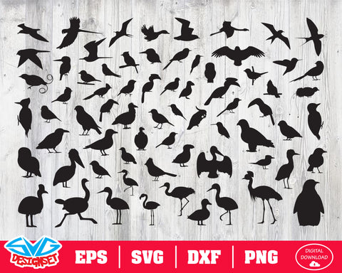 Bird Svg, Dxf, Eps, Png, Clipart, Silhouette and Cutfiles