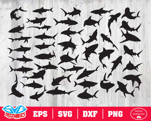 Shark Svg, Dxf, Eps, Png, Clipart, Silhouette and Cutfiles