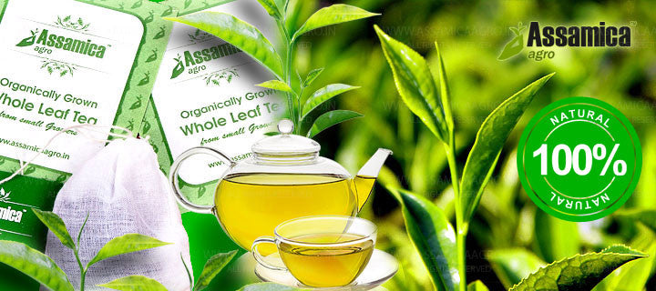 Assamica Agro Green Teabags: The Best Tea Bagged Green Teas in India