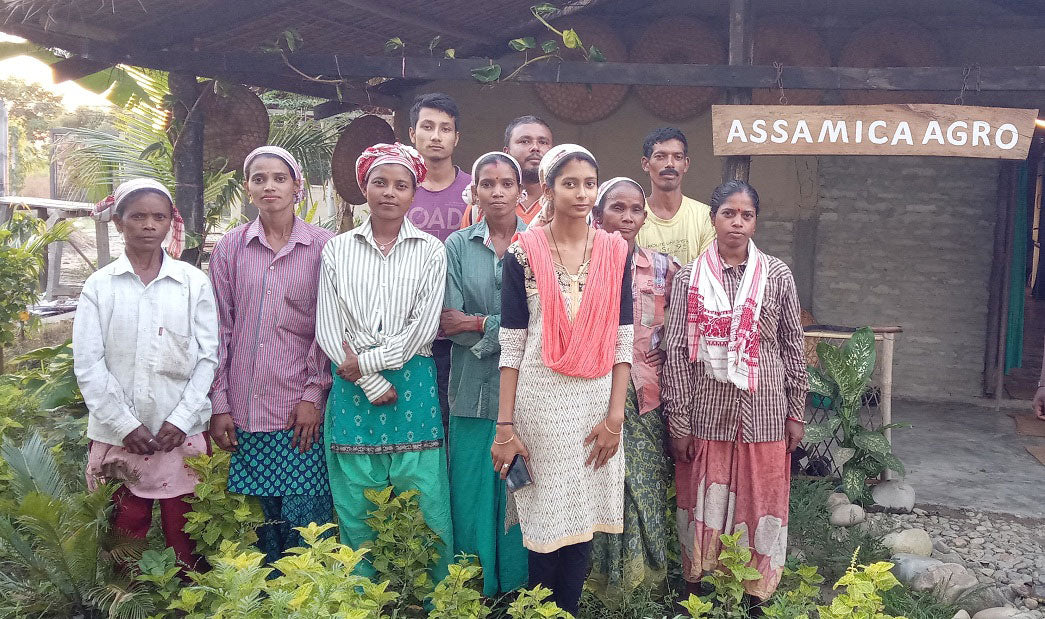 Assamica Agro - Tea Workers