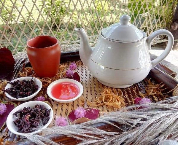 Hibiscus Tea - A Healing Herbal Tea