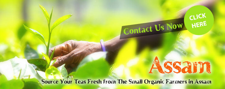 Wholesale Organic Assam & Green Tea from Small Farmers