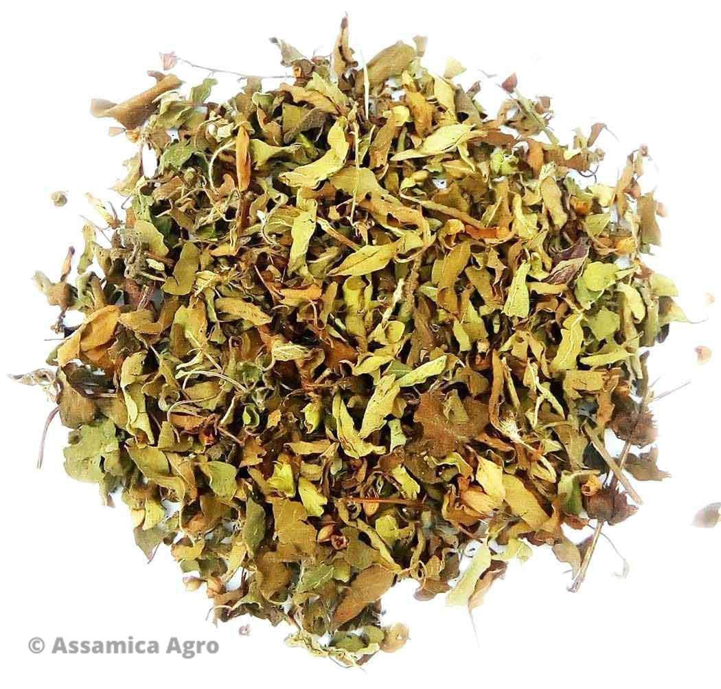 healing properties of tulsi or holy Hindi it is known as 'tulsi' and 'holy basil' in  ulcerogenic and have ulcer healing properties ocimum sanctum in dose of 100mg/kg was found to.