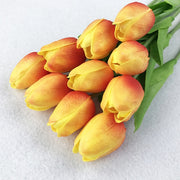 Tulip flowers as real