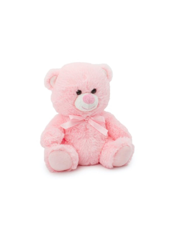 Pink Teddy Bear and Flowers Delivery Melbourne. Flower me softly does Gifts and custom flower delivery.