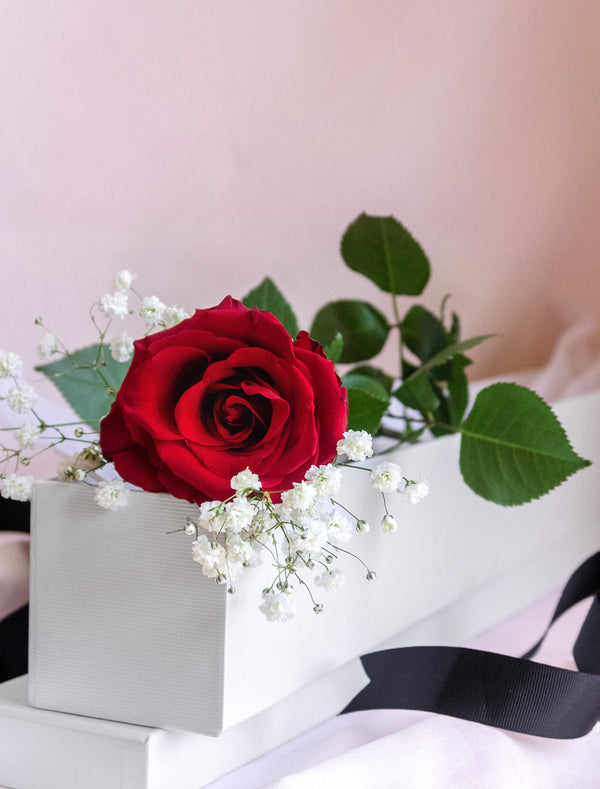 Red Rose Delivery Melbourne Flower me softly Red rose in a box