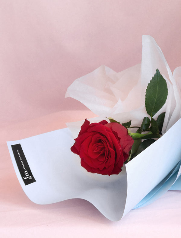 Single Red Rose Wrapped in Premium Paper Valentines Day Red Rose Delivery Melbourne