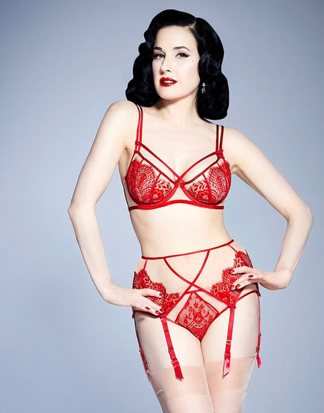Maestra Red Brief