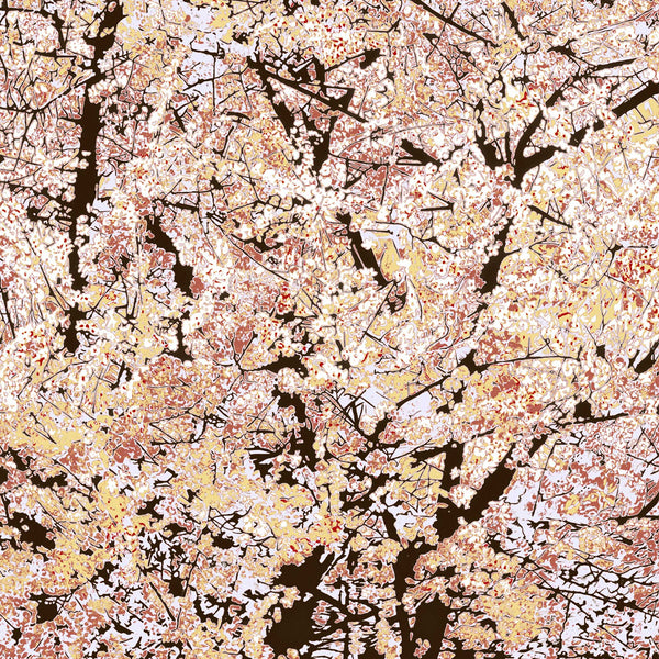 Almond Tree- Coral
