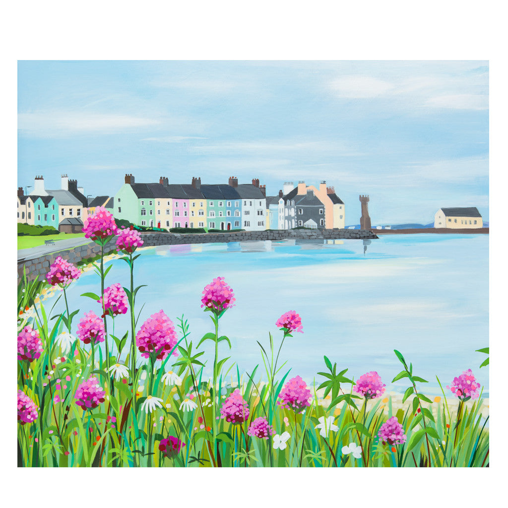 Beaumaris Pinks