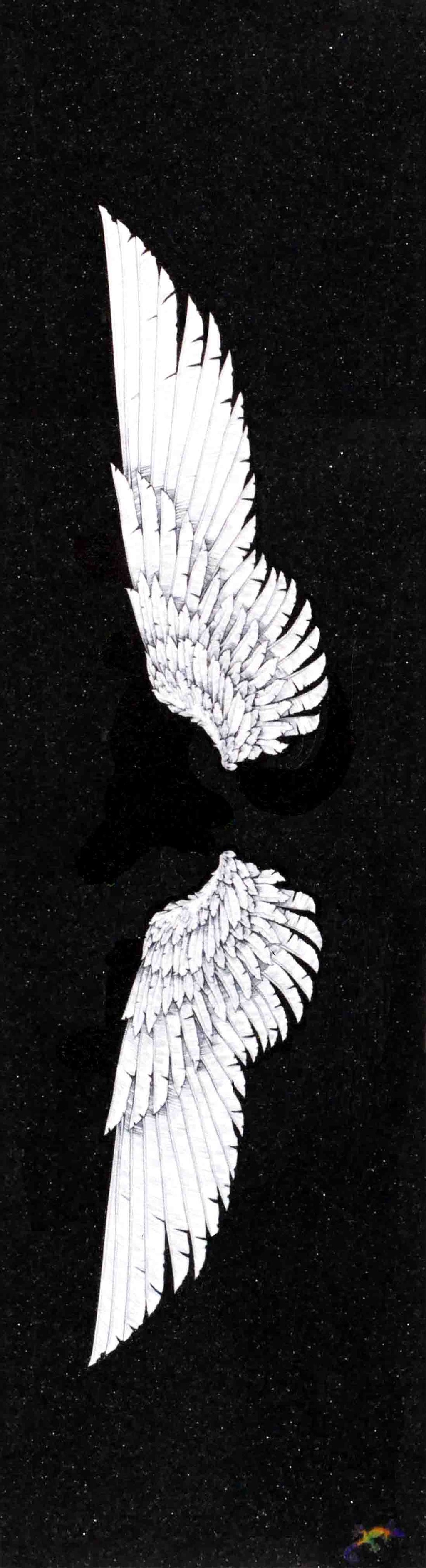 "White wings - Grip Tape 9""x33"""