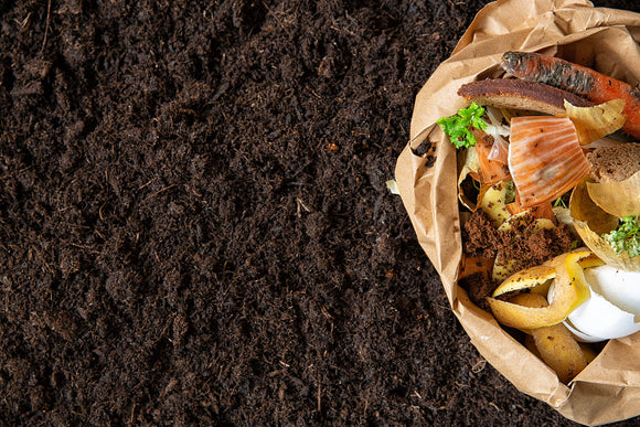 How To Compost In Winter Months