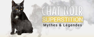 Superstition chat noir